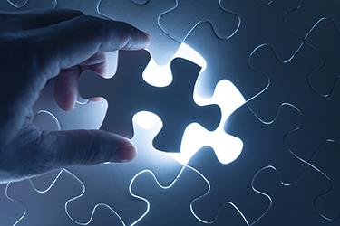 IT organizational structure