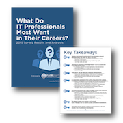 What_Do_IT_Pros_Want_graphic1_feature
